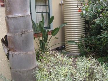 Hidden Canterbuty Rainwater Watertank