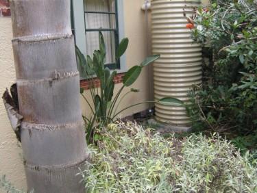 Hidden Canterbuty Watertank